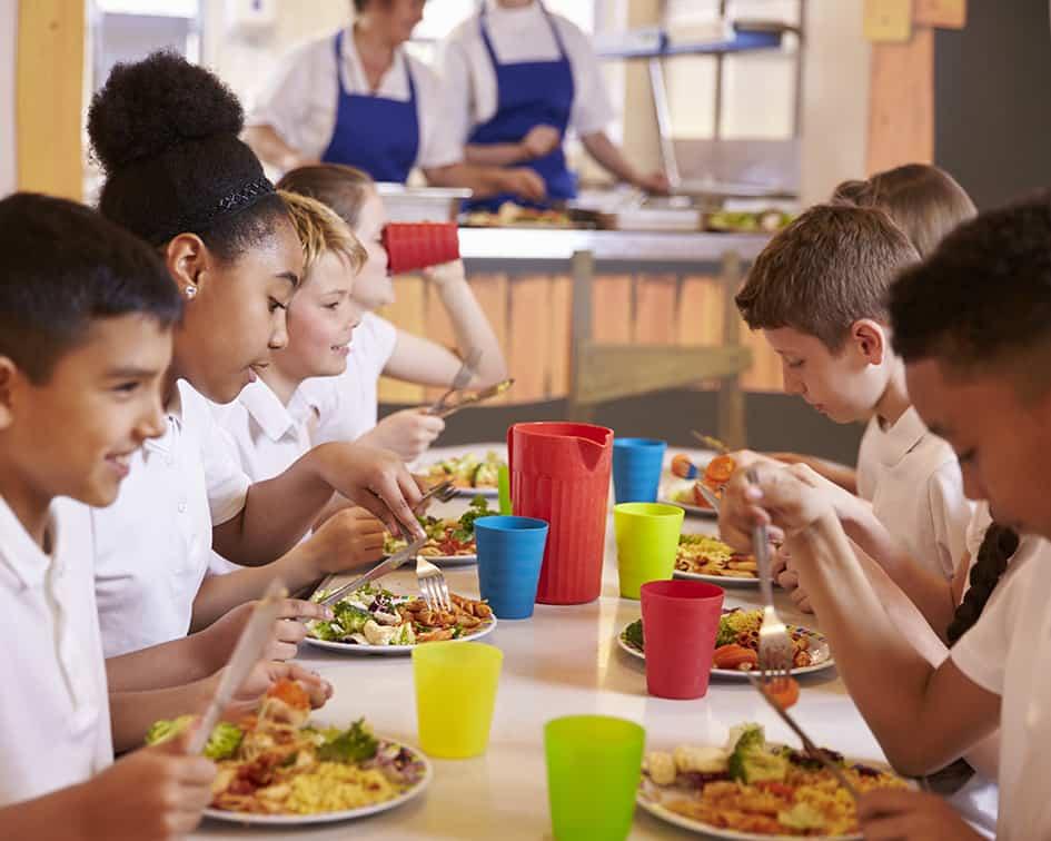 Monitor de Comedor Escolar - Formainfancia