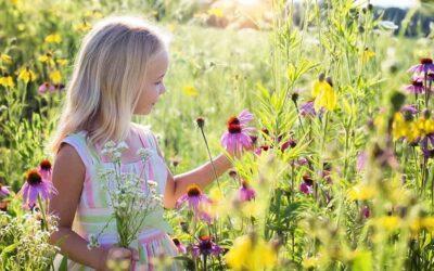 Guía práctica sobre la gestión emocional en la infancia