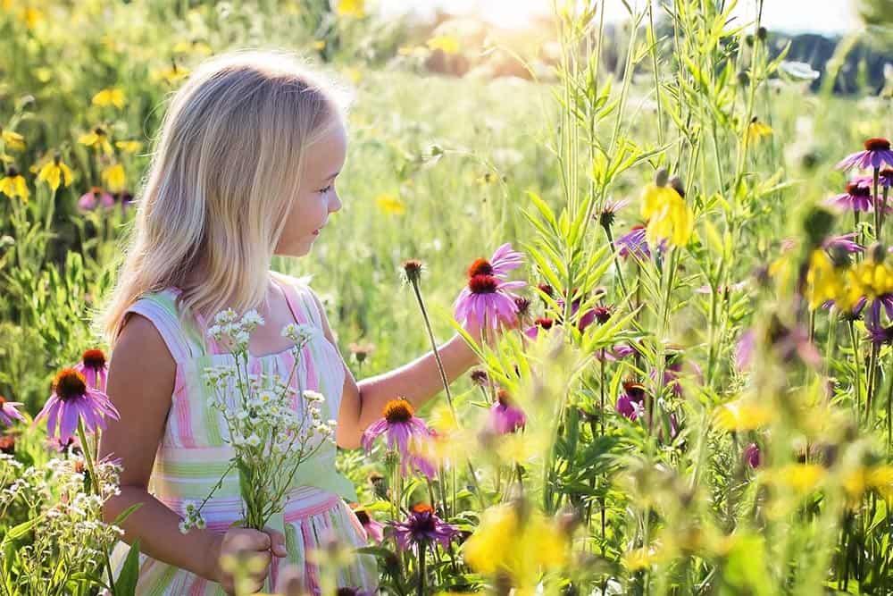 Descubre cómo puedes ayudar en la gestión emocional infantil