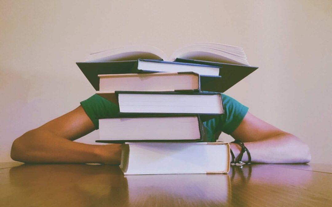 El pedagogo en diferentes ámbitos profesionales